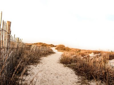 beach-962787_1280